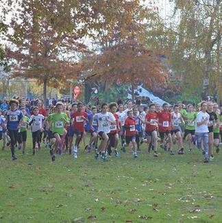 Cross du 19 novembre : 538 participants