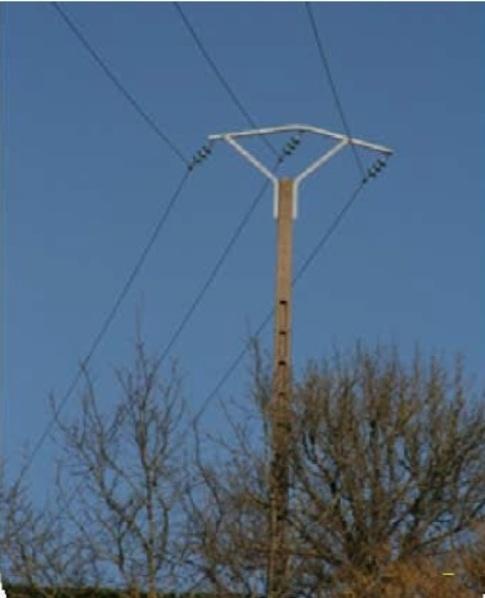 ELAGAGE : ATTENTION AUX LIGNES ELECTRIQUES