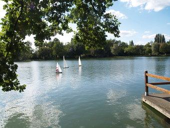 Regates sur le Lac